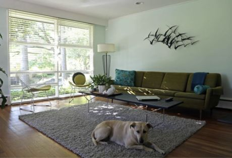 Jacquelyn Jordan's dog Ana relaxes in the living room of Jordan's 1951 modernist home in Raleigh, N.C.